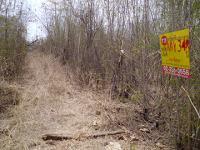 ที่ดินเปล่าหลุดจำนอง ธ.ธนาคารกรุงศรีอยุธยา ยางโทน กิ่งหนองม่วง จังหวัดลพบุรี